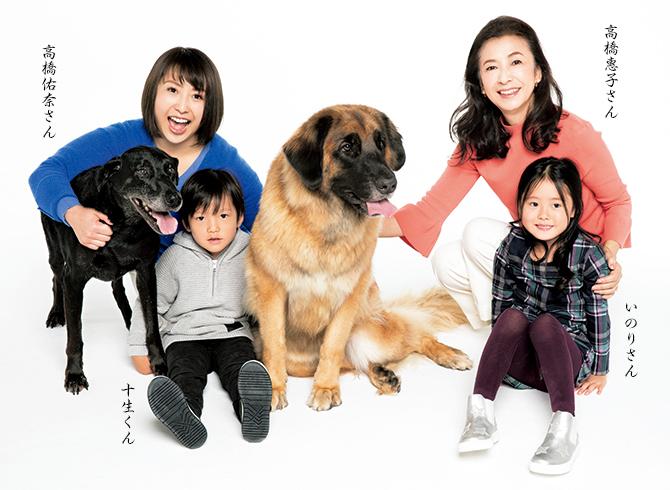 「高橋惠子 家族」の画像検索結果