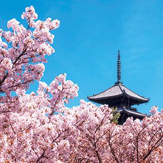 家庭画報の旅 京都