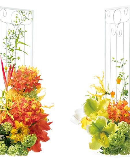 家庭画報 6月号の表紙の花