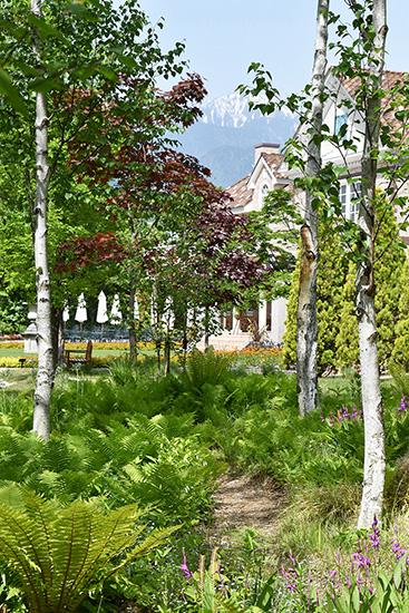ラ・カスタ ナチュラル ヒーリング ガーデンから望む北アルプス