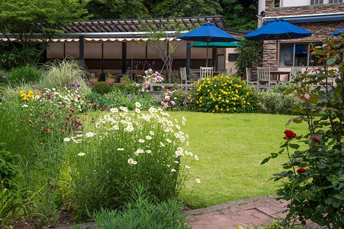石釜ガーデンテラスのテーブルから眺める庭
