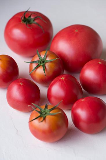 大人検定365 甘い「フルーツトマト」、サイズが普通のトマトより小さい理由は?