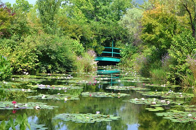 北川村モネの庭マルモッタンの水の庭
