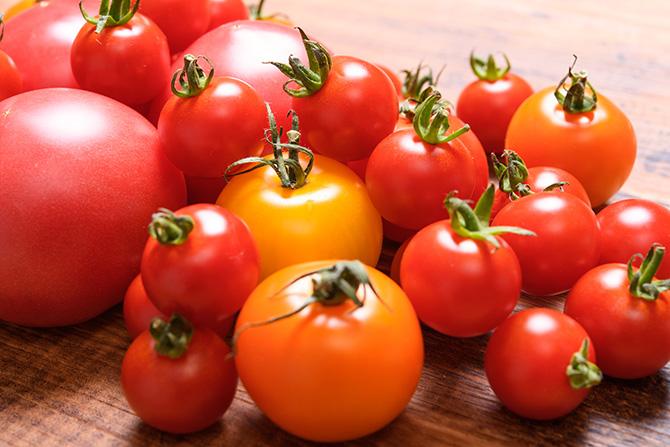 大人検定365 「トマトが赤くなると医者が青くなる」って、聞いたことがある?