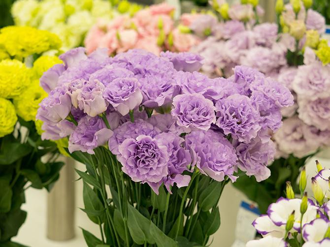 大人検定365 花屋さんの人気者、この花の名前は?