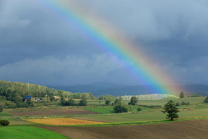 大人検定365 虹の色をすべて正しく答えられますか?