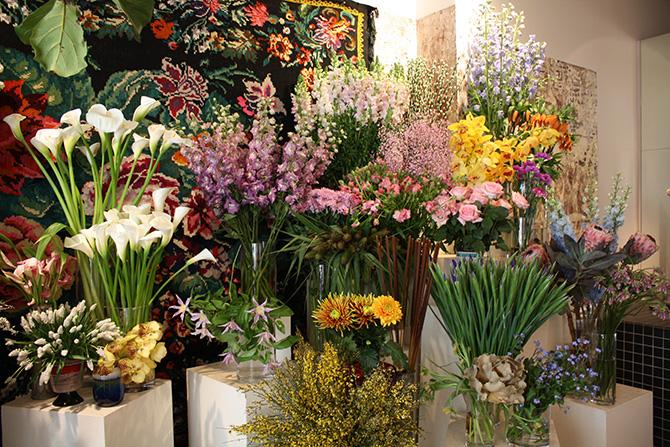 パリの花屋「ドゥボーリュー」。Debeaulieu,Paris.