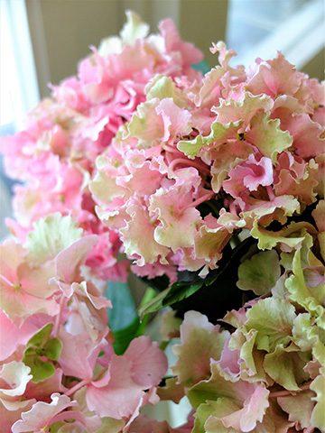 7月12日の贈り花