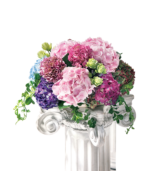 家庭画報 表紙の花