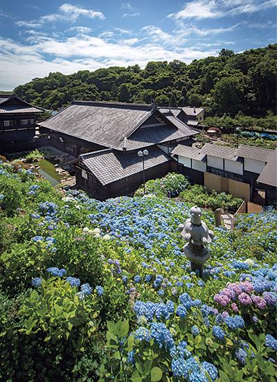「あじさい園」から見る旧青山別邸