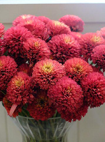 8月19日の贈り花