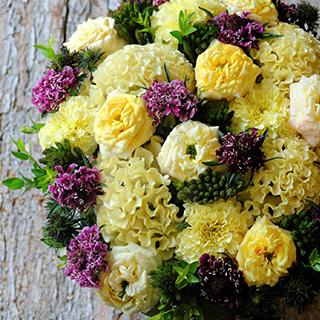 9月15日の贈り花