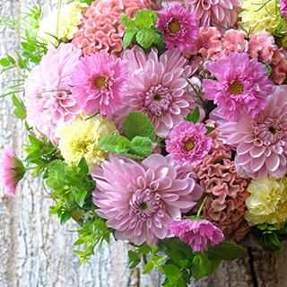 9月16日の贈り花