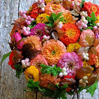 9月22日の贈り花