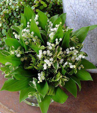 11月8日の贈り花