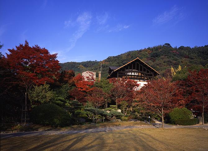 紅葉しているアサヒビール大山崎山荘美術館の庭園