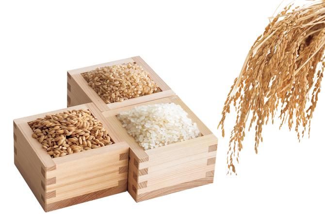 《精米する》米をおいしく食べられる期間は?
