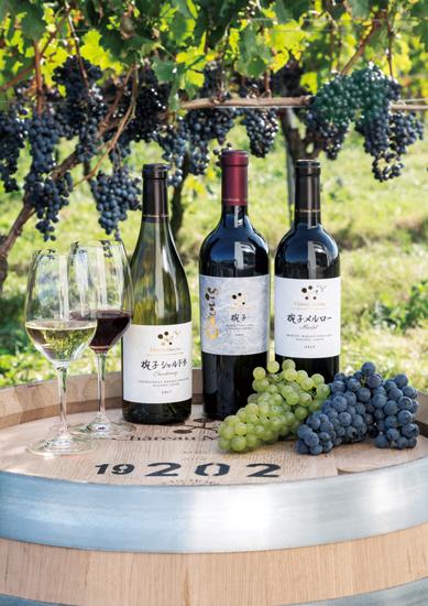 椀子ヴィンヤードのワイン