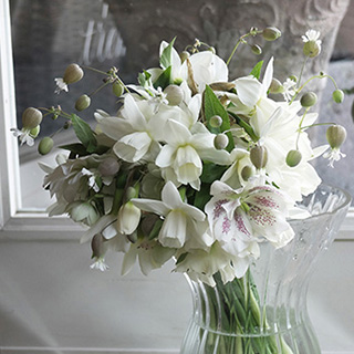 3月31日の贈り花