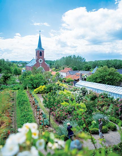 オーガニック栽培のキッチン・ガーデン