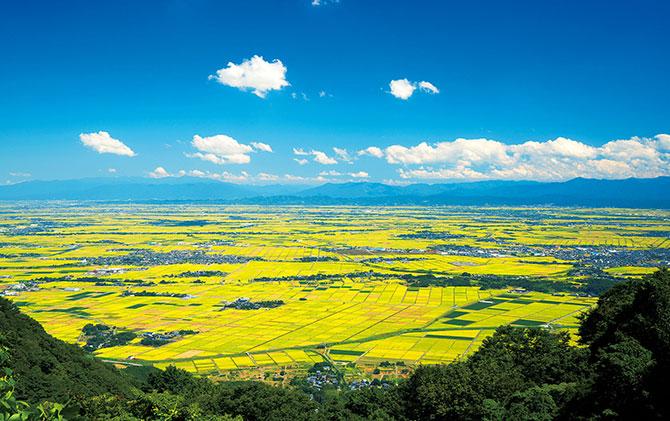 ふるさとの絶景【新潟県】弥彦山山頂から眺める越後平野