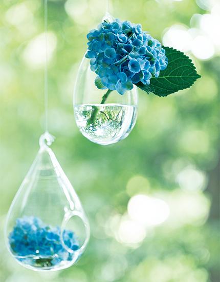 紫陽花とFUGAの花器