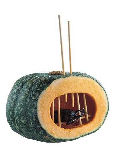 カボチャの虫籠