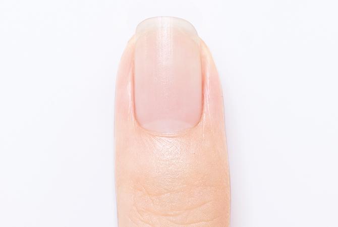 爪の長さ形の整え方