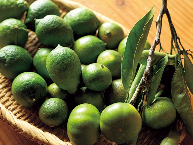 「清水果樹園」のレモンライム、柑橘