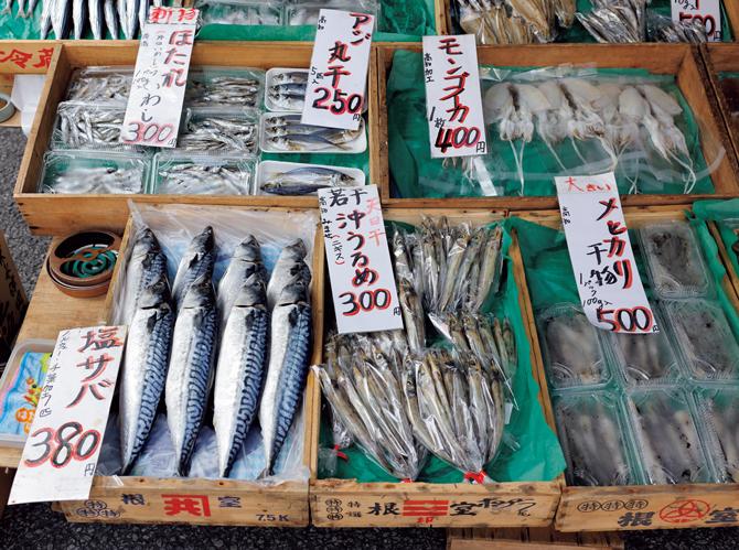 「沖ウルメ」の名で親しまれているニギスほかの干物が並ぶ。