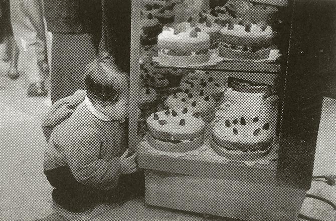 日本生まれ、日本育ち みんな大好きショートケーキ