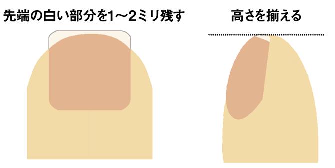 爪のカット