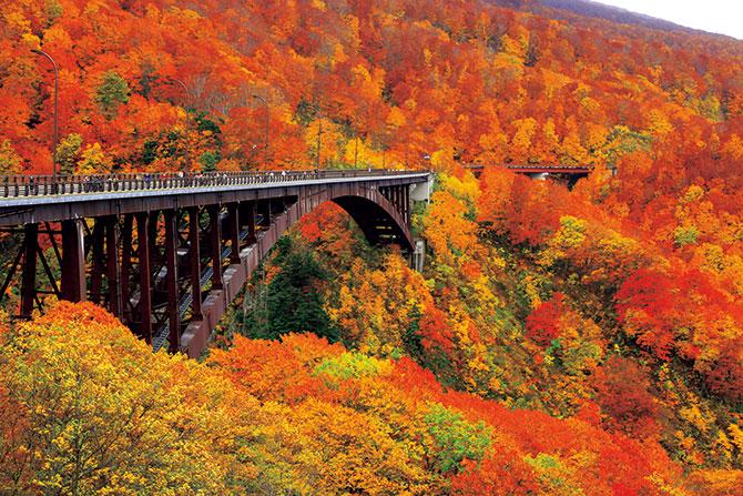 【東北水辺の紅葉巡り3日間】紅葉と渓流が織り成す大パノラマ