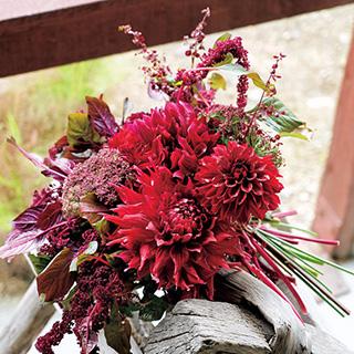 花摘み庭のおすすめプラン5