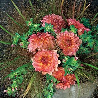 2種の葉色の対比が美しい中間色のモダンなブーケ