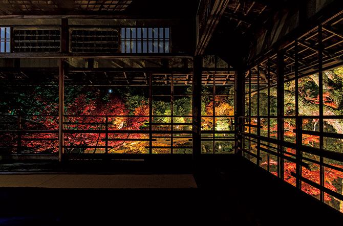 【京都・城崎紅葉巡り3日間】南九州の初夏を彩る花巡り