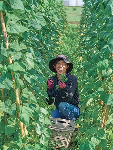 日本古来の草木堆肥を復活。「むかし野菜」を未来へ