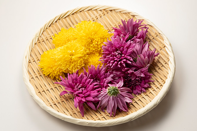 「菊花と秋野菜の酢のもの、菊花とこんにゃくのくるみ和え」
